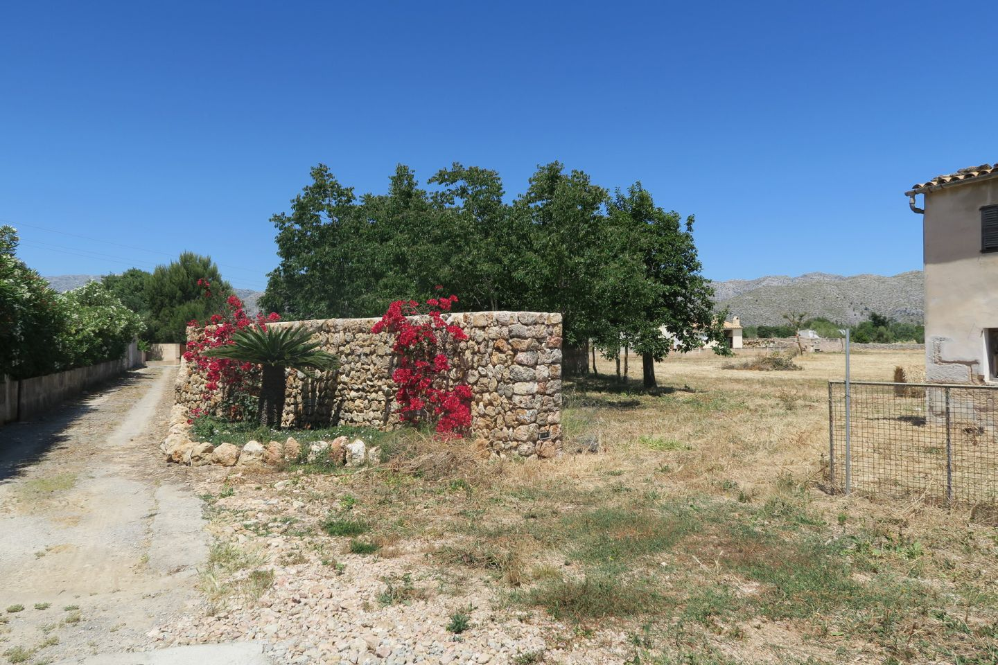 Countryside Land for sale in PUERTO POLLENSA 5