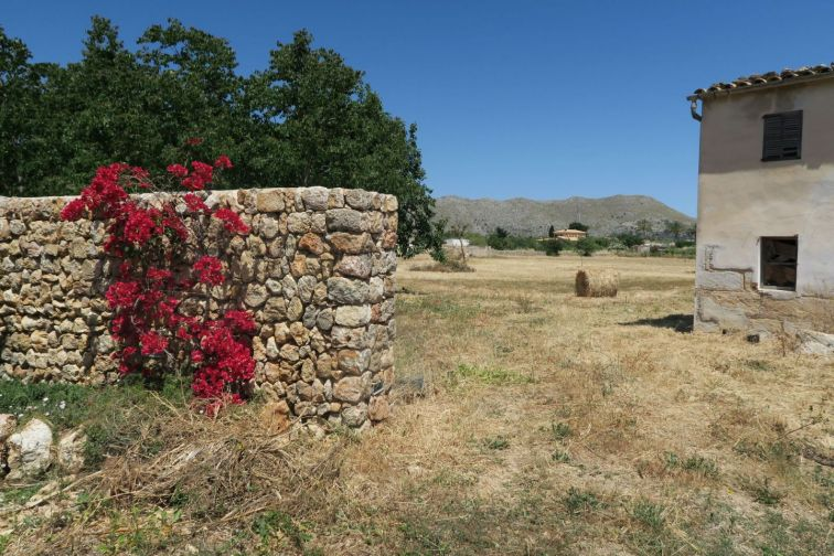 Countryside Land for sale in PUERTO POLLENSA